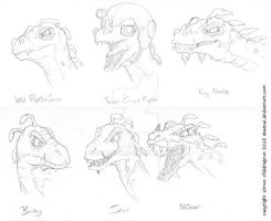 Raptor Heads by deadcal