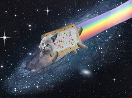 Real Nyan Cat by SilverLucario12