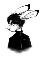 hase by pinuh