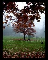 Autumn Cold I by PorcelainPoet