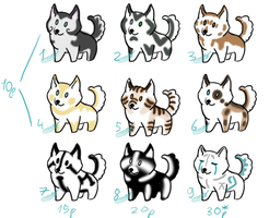 Canines for adopt by Domisea