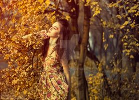 Warm autumn IV by cherrilady