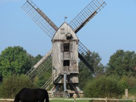 Windmill 3 by mrscats