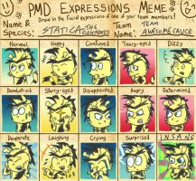 Expressions meme - Statica by FeralSonic