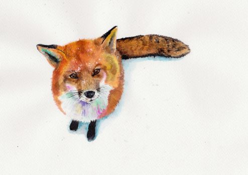 Fuzzy Fox in the Snow by L-i-n-d-s