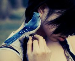 A little birdie told me by blanklives