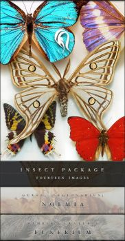 Package - Insect - 3 by resurgere