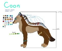 Coon contest enty by SpiritInSpace