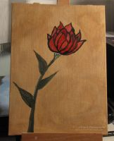 Indian Paintbrush Painting by caybeach