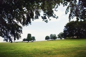 The Park by Freacore