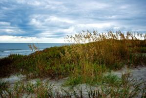 Sand Dune and Storm Clouds by Vironevaeh