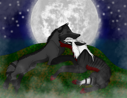 oXo-::Moonlight Romance::-oXo by XxShearStrikexX
