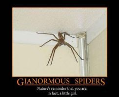 XD I hate spiders. by MikalaLD