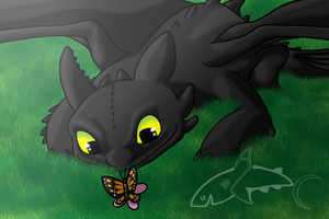 Toothless found a Butterfly by CavySpirit