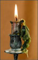 Candle-Dog..Cat... by fisher57