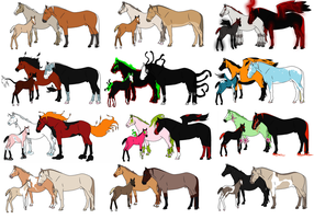 Mystery Horse Family Adopts- CLOSED by HayleyWolf