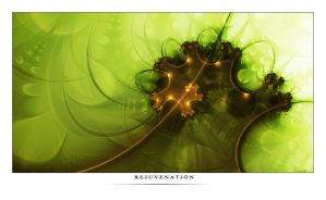 Rejuvenation by premutos