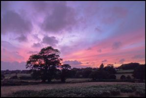 Shepherds Delight by sags