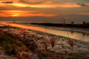 Sunset of Sungai Burung by fighteden