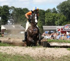 Cross country stock 1 by ByMelody