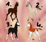 Foal adoptables CLOSED by i3nici
