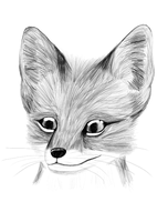 Fox Cub by RedSnowFox
