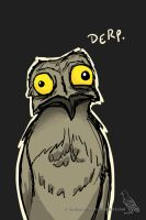 Potoo by NorthernRaven