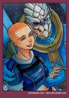 PSC - Garrus and Shepard 2 by aimo