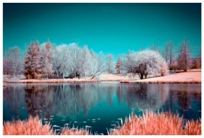 IR Lake II by Molosseraptor