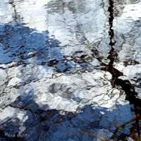 puddle III by EvaShoots