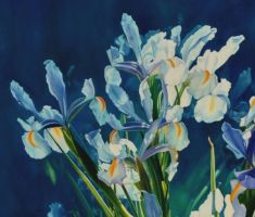 Dutch Iris's-detail   PAINTING by AstridBruning