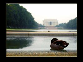 somewhere in d.c. 02 by atyclb