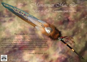 Mannon Mac Lir Quill Pen by ChaeyAhne