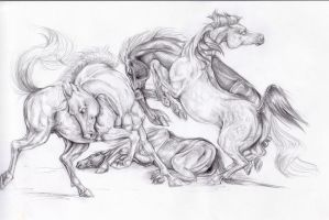 My Pencil Horses by PolarHamster