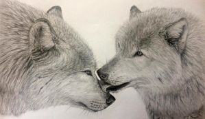 Wolves by LauriieT