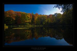 Colors of Autumn by donk00085