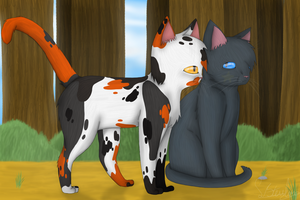 The new deputy of Thunderclan.. by Sisa611