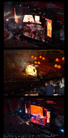 Muse - Wembley 07 by BrokeNL