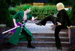 Fight! (Zoro + Sanji Timeskip) - AWA 2013 by kiokukaiba