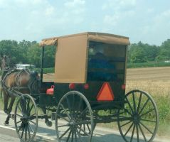 Amish Carriage by MogieG123