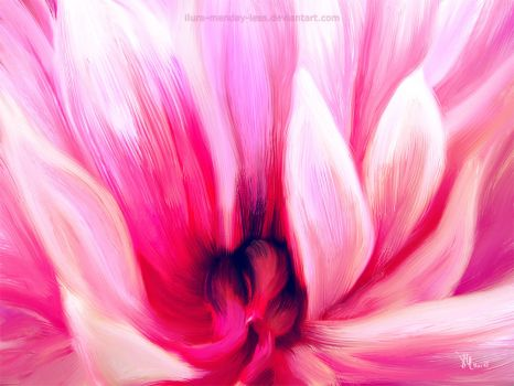 blazing peony in oil by ilura-menday-less