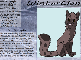 AshPelt's Ref Sheet by DracKeagan