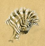 Brown Paper Zebra Sketch by Hbruton