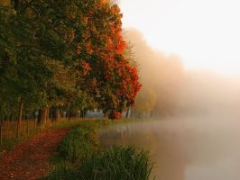 Autumn Haze II by Photopathica