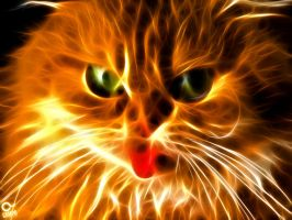 cat fractalius by KMPO-ANIBAL-olARTE