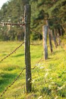 Fence before Sunset by panna-cotta