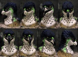 Seahawk! by Crystumes