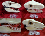 Raptor Blank Auction by DreamVisionCreations