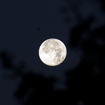 DSC06489 Harvest Moon 2 by wintersmagicstock