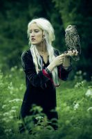 Shaman and owl3 by Angelicc